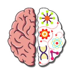 Brain Crazy Câu trả lời