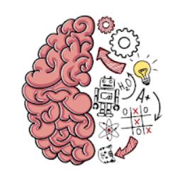 Brain Test Cevaplari